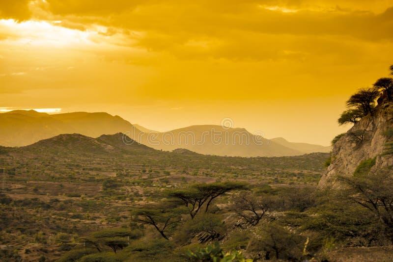 Öken av östliga Etiopien på solnedgången arkivfoto