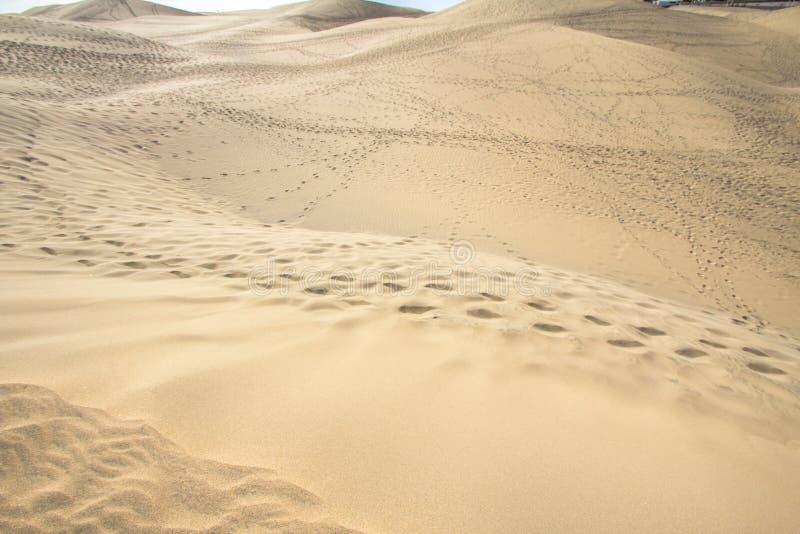 Öken för Maspalomas sanddyn, storslagna Canaria royaltyfri fotografi