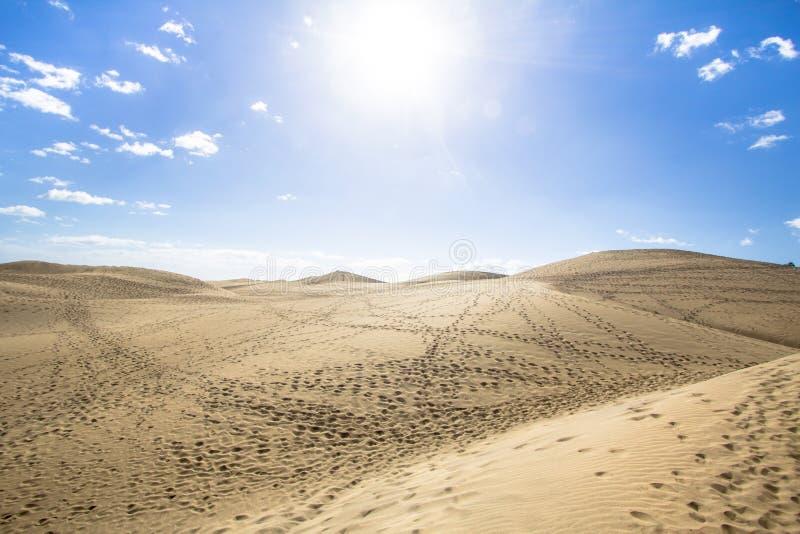 Öken för Maspalomas sanddyn, storslagna Canaria arkivbild
