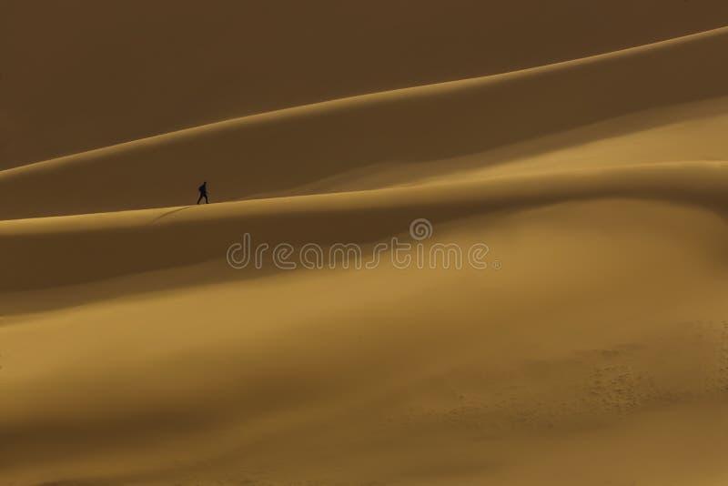 Öken Libyen arkivfoto