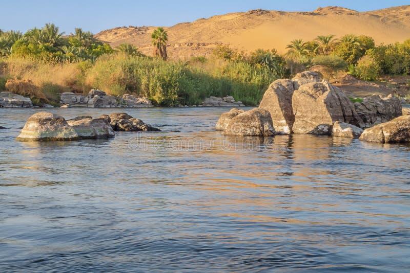 Öken och oas nära Jazirat Salujah royaltyfria bilder