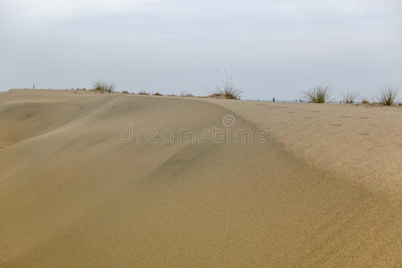 Öken- och sandsikt arkivbilder