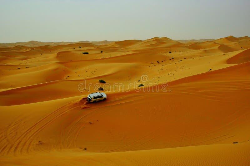 Öken Safari Dubai arkivbilder