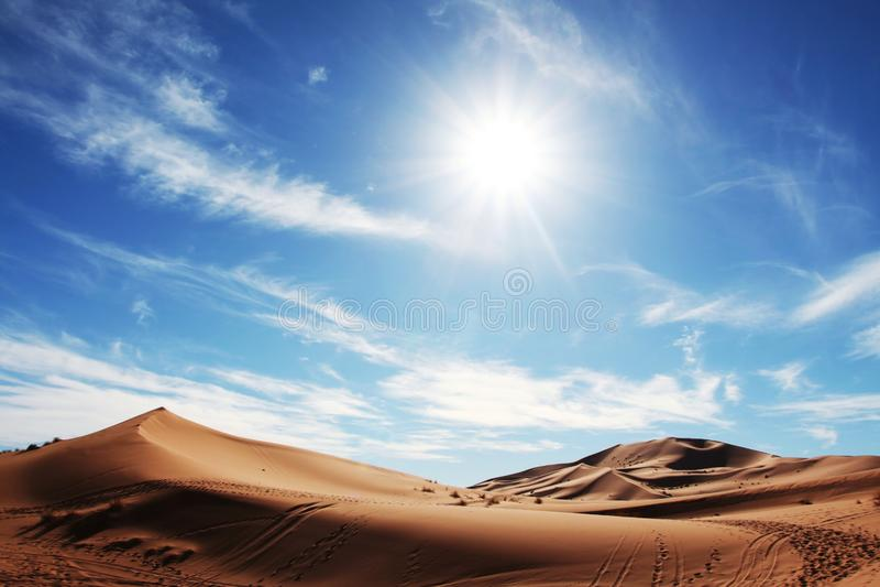 öken Sahara Arkivbilder