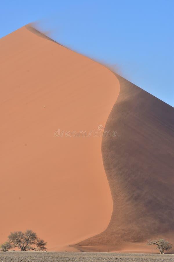 Ökendyn 45 Namibie royaltyfria foton