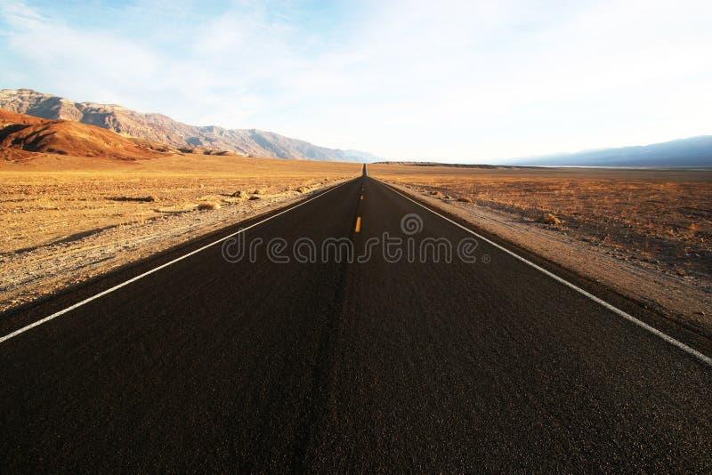 ökenhuvudväg royaltyfri foto