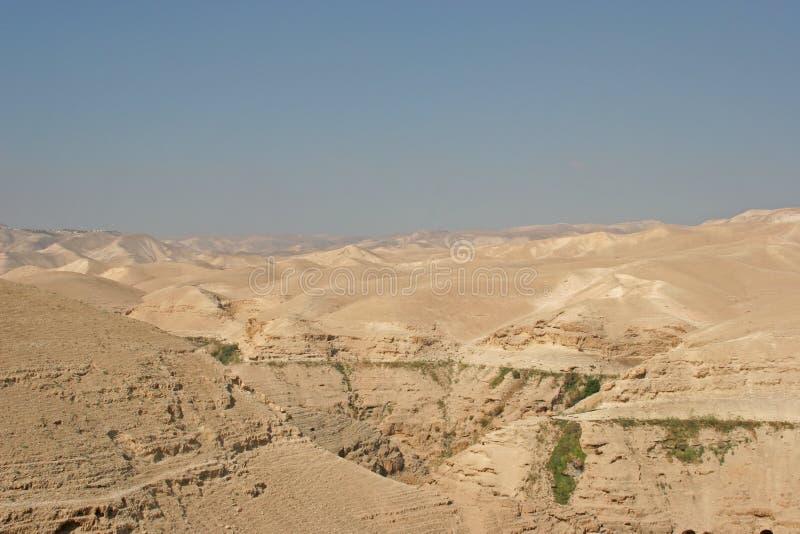 ökenisrael judea arkivfoton