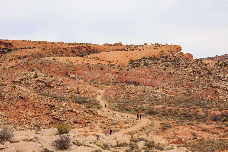 Ökenlandskap på våren, Utah, USA arkivfoton