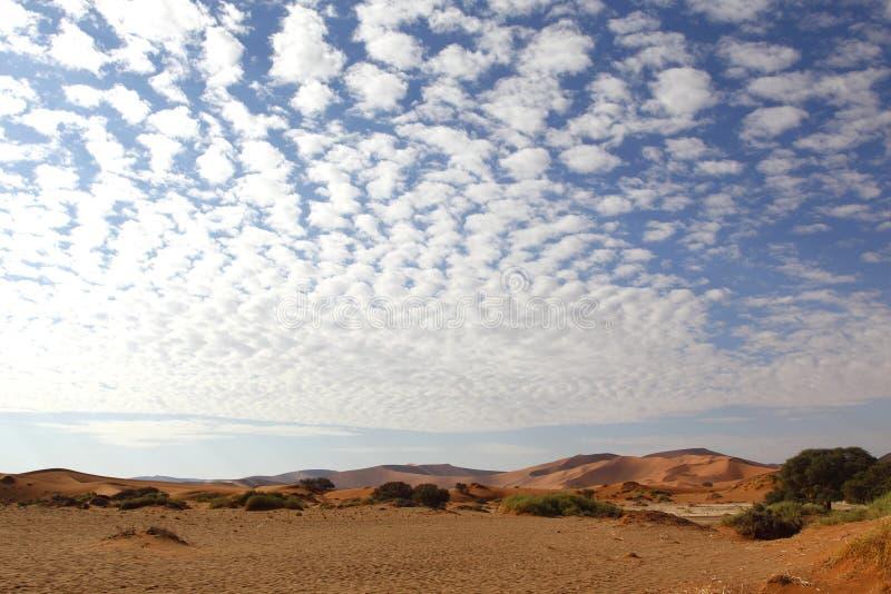 Ökenlandskap, Sossusvlei, Namibia arkivbild
