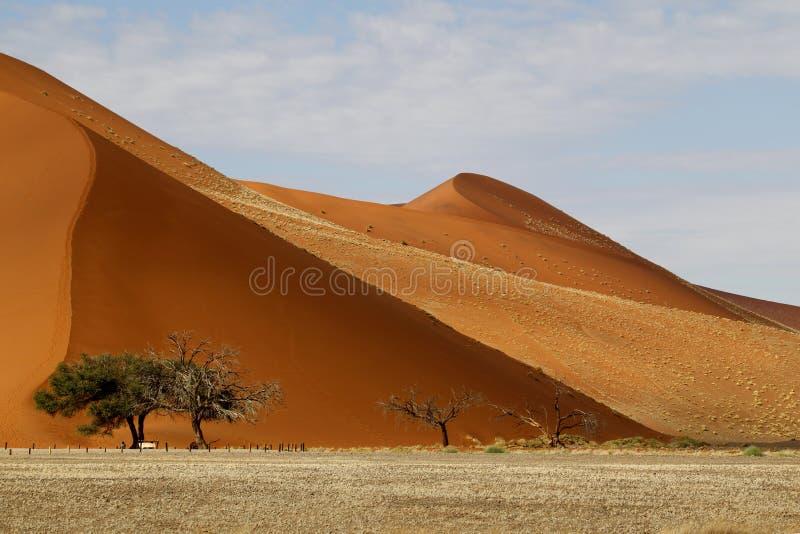 Ökenlandskap, Sossusvlei, Namibia arkivfoton