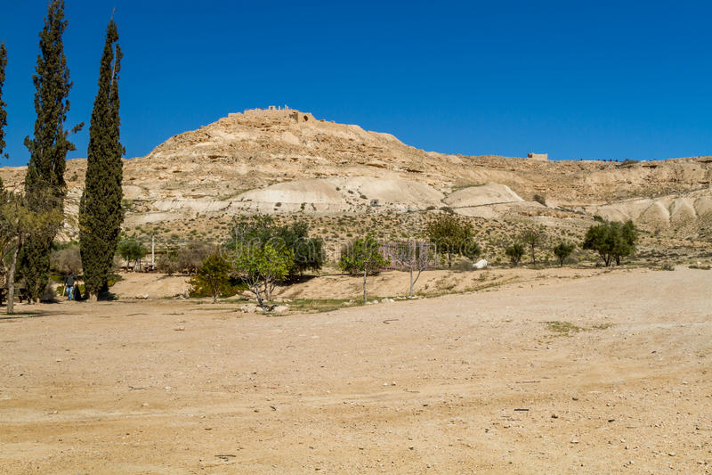 Ökenlandskapet, Avdat, Nabatean stad i den Negev öknen, Israel royaltyfri fotografi