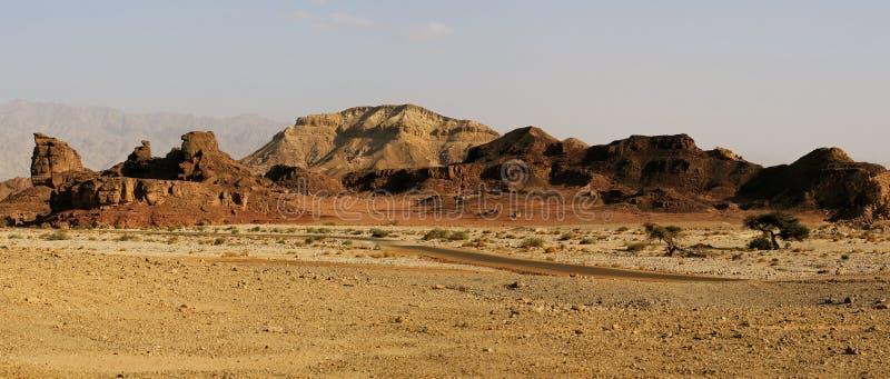 Ökenlandskapet på Timna parkerar, Israel royaltyfri fotografi