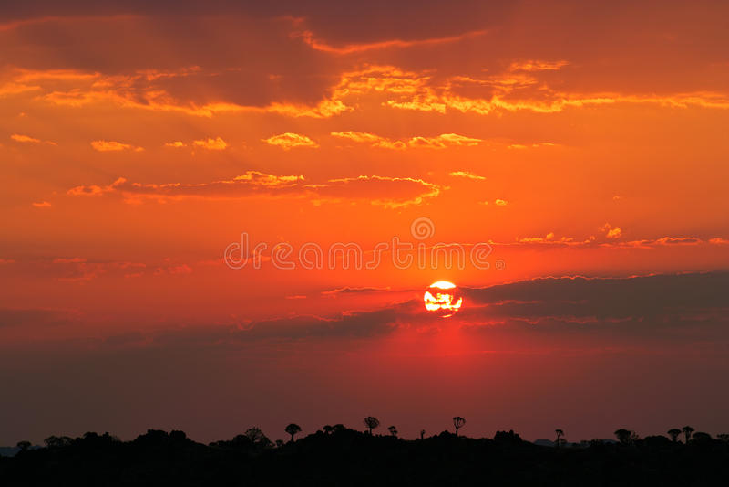 ökennamibia solnedgång arkivbilder
