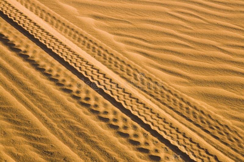 ökenspår royaltyfri fotografi