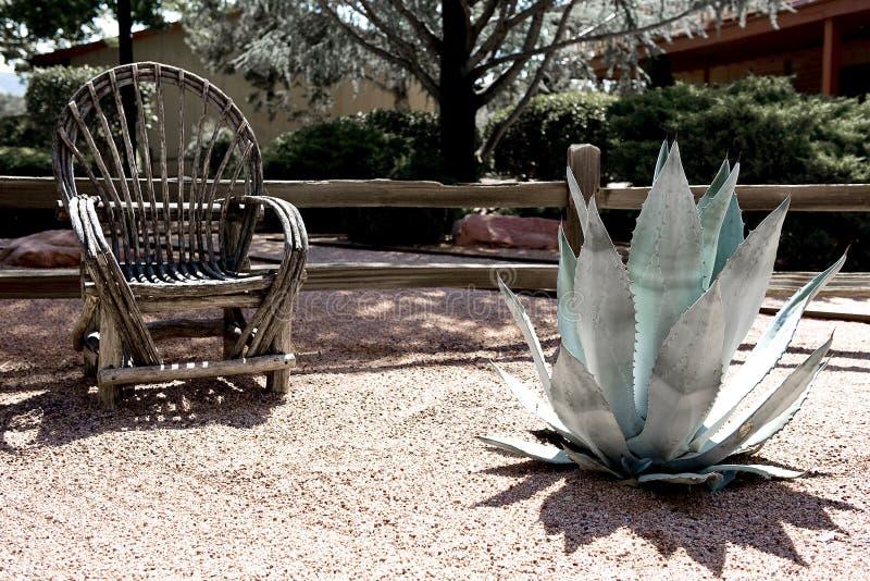 ökenträdgård royaltyfria foton