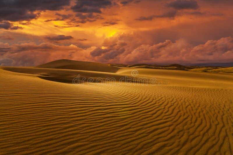 Öknar och landskap för sanddyn på soluppgång fotografering för bildbyråer