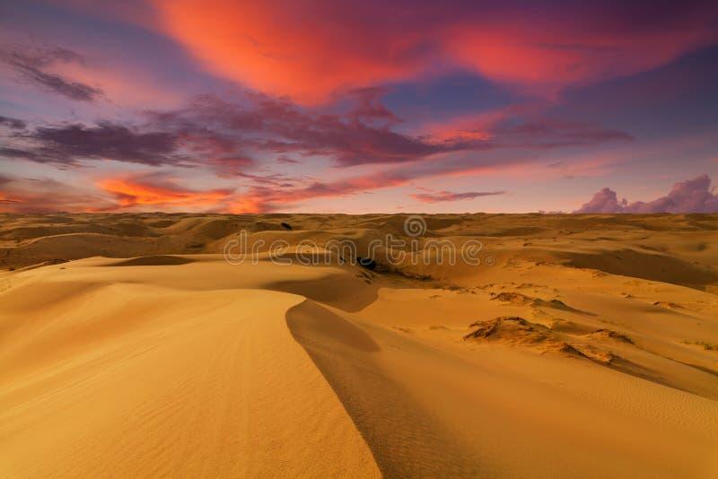 Öknar och landskap för sanddyn på soluppgång royaltyfria foton