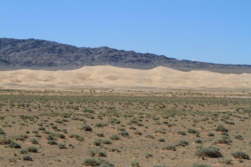 Download Öknen Gobi arkivfoto. Bild av askfat, öken, globalt, värme - 37346038
