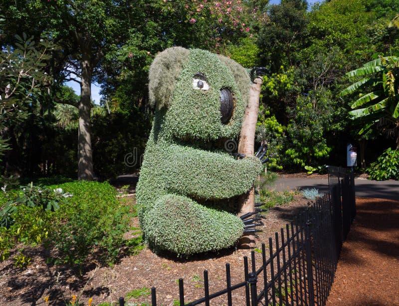 Öko-Skulptur im Koala geformt, an Sydney Botanical-Garten für Parkdekoration lizenzfreie stockfotos
