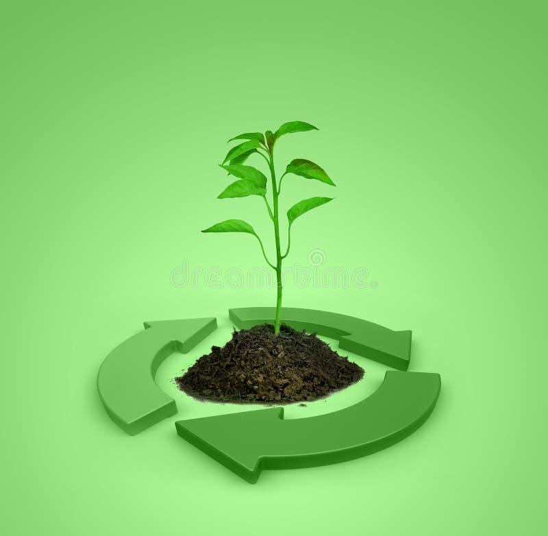 Ökologie lizenzfreie abbildung