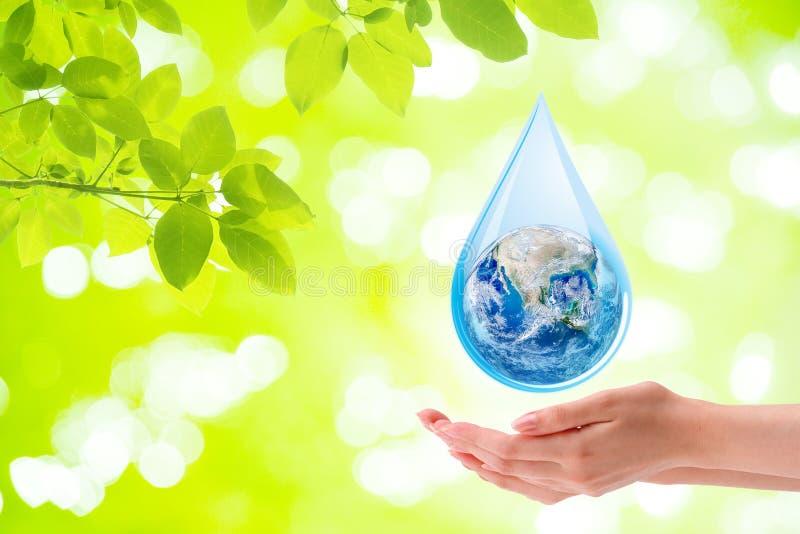 Ökologie-Konzept: Frauenhandholdingplaneten-Erdkugel im Wassertropfen mit grünem natürlichem des Hintergrundes lizenzfreie stockfotos