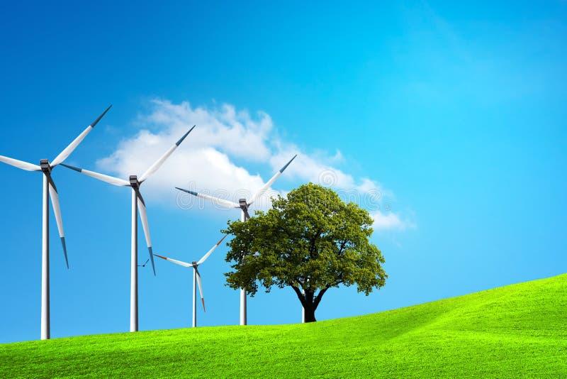 Ökologie - Wind der Änderung stockfotos