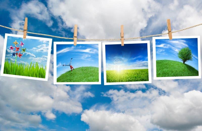 Ökologiekonzept stockfotografie