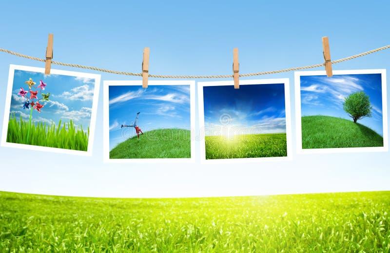 Ökologiekonzept stockfotos