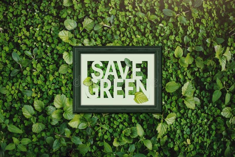 Ökologiekonzept, speichern grünes Wort innerhalb des hölzernen Fotorahmens, surr lizenzfreie stockbilder