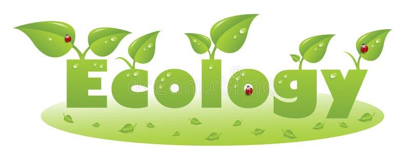 Ökologietextuntertitel mit Marienkäfer- und Grünblättern lizenzfreie abbildung