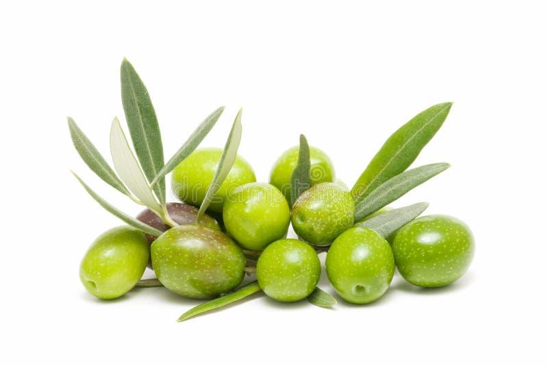 Ökologische Oliven lizenzfreie stockbilder
