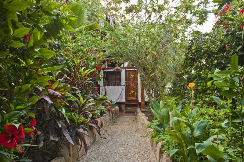 Ökologischer Garten Stockbilder