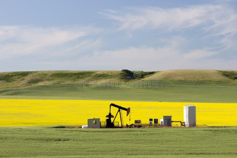 Öl-Erdöl Pumpjack Alberta lizenzfreie stockfotografie