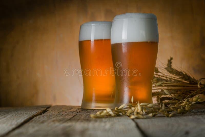 Öl i frostigt rånar på lantlig bakgrund arkivbild