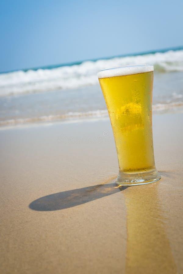Öl på sandstranden royaltyfria bilder