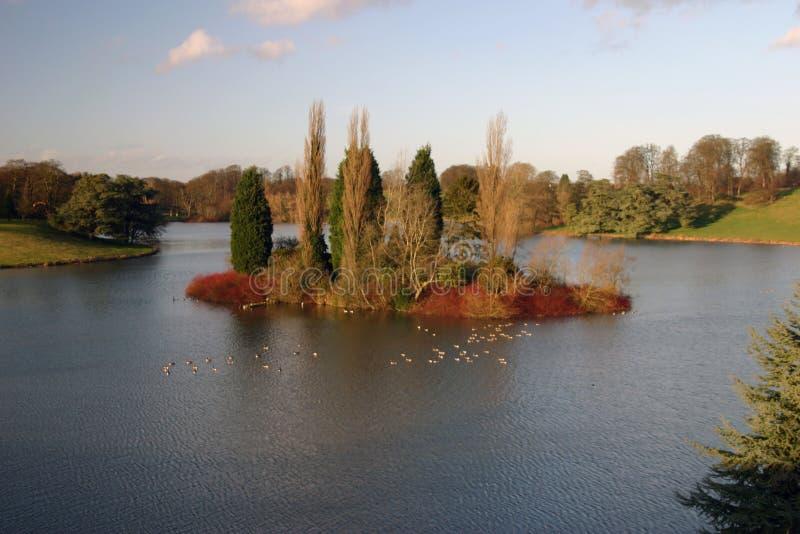 Download ölake arkivfoto. Bild av oklarheter, gräs, bygd, lake, vatten - 521012
