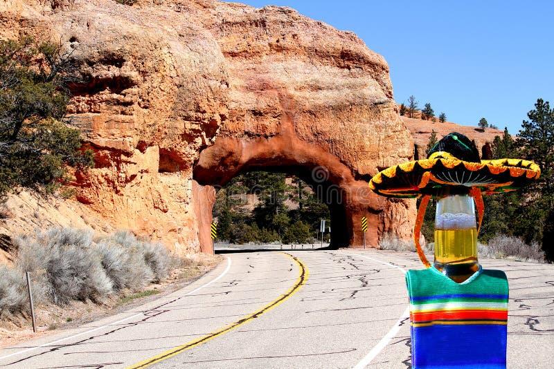 Ölflaska i mexicansk sombrero och poncho på tunnelen royaltyfri fotografi