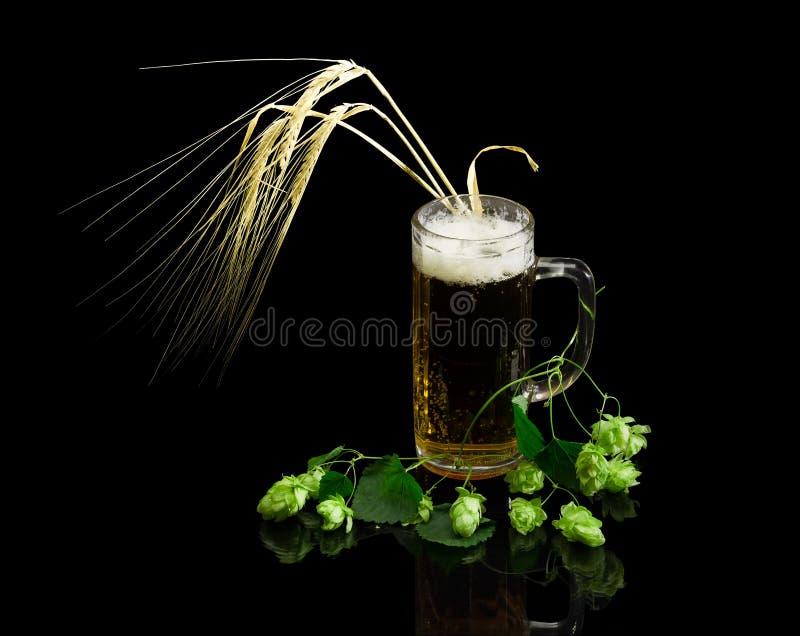 Ölglasföremål med öl, filial av flygturer, öron av korn royaltyfri fotografi