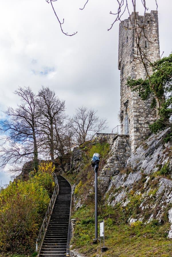 Ölkrusslott av Baden i Schweiz - 1 royaltyfria foton