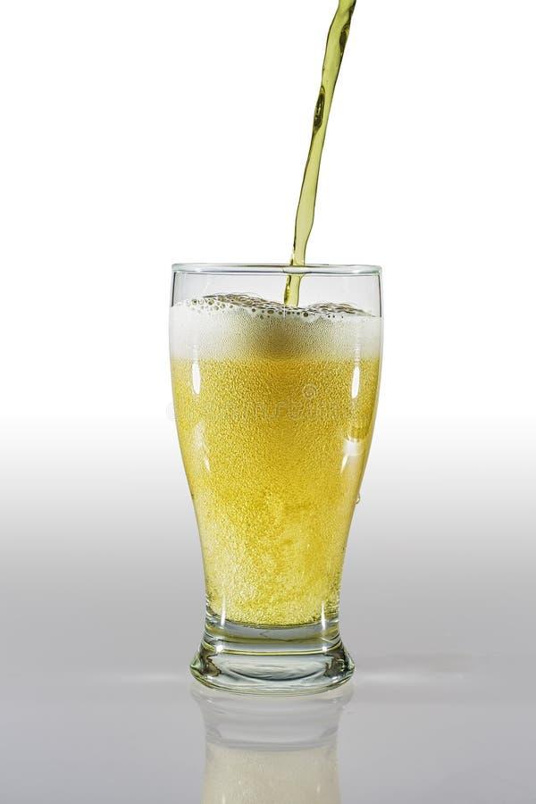 Öltulpanexponeringsglas med fallande och fyllande exponeringsglas för öl arkivbilder