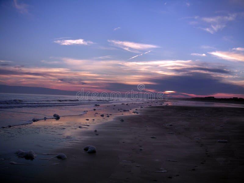 Ön av gömma i handflatan den South Carolina solnedgången till och med molnen med purpurfärgade himlar arkivbild