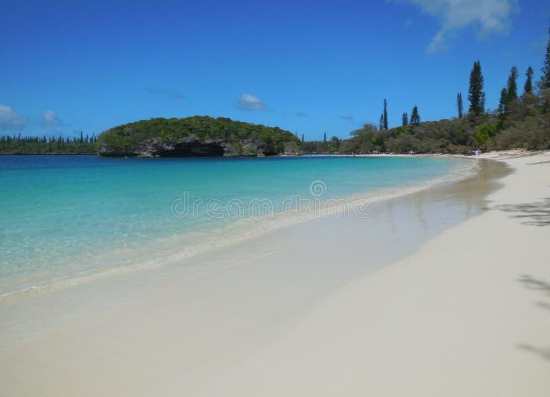 Ön av sörjer, Nya Kaledonien royaltyfria bilder