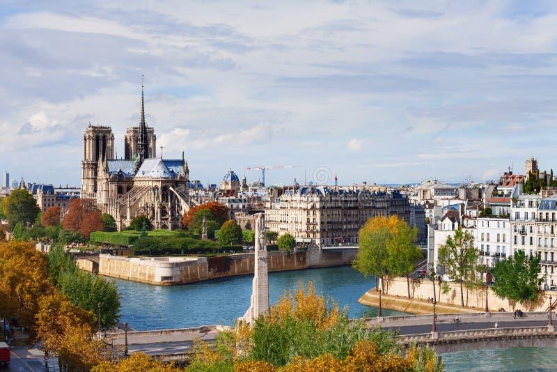 Ön citerar med domkyrkan Notre Dame de Paris royaltyfri fotografi