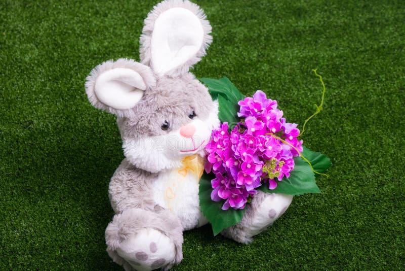 Önska att vara min valentin - kanin med blommor arkivfoto