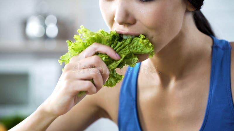 Önska förlora vikt och var slank, damdanande själv som äter grönsallat, näring royaltyfri bild