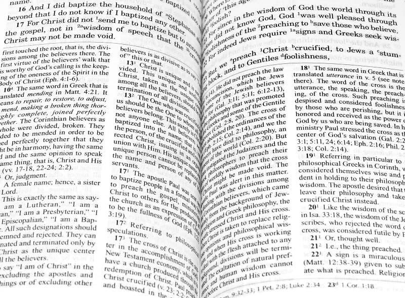 öppen bibel arkivfoton