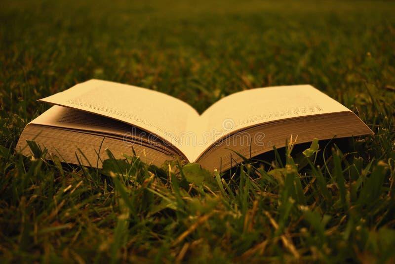 Öppen bok på grönt gräs i sommaren arkivbild