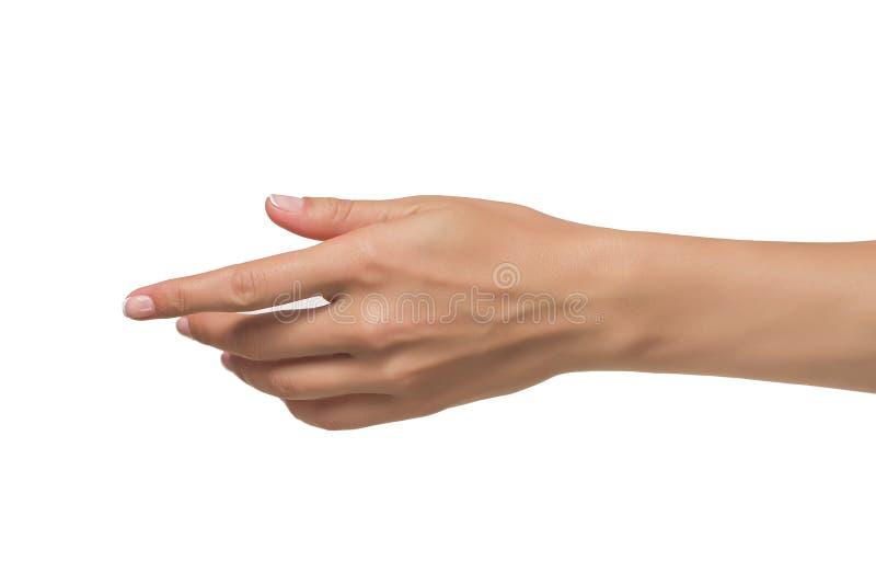 Öppen hand för kvinna arkivfoton