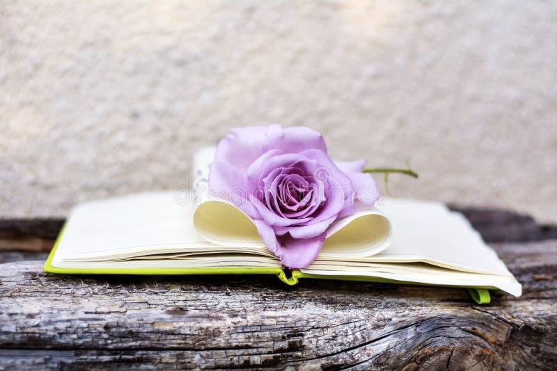 Öppen Notepad med rosa färgrosen på en träbakgrund fotografering för bildbyråer