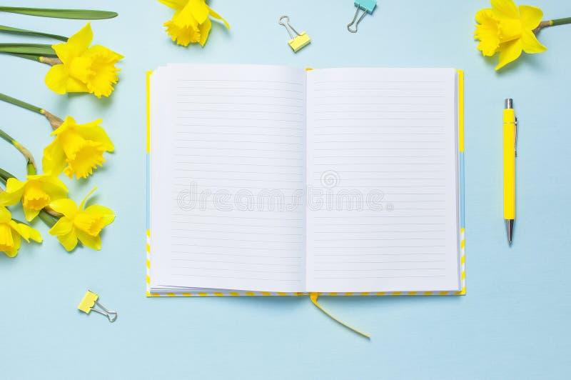 Öppen tom anteckningsbok, penna, gem, pingstlilja för vårblommapåskliljor på blå bakgrund Kvinnligt skrivbord, kontorsskrivbord,  royaltyfri bild